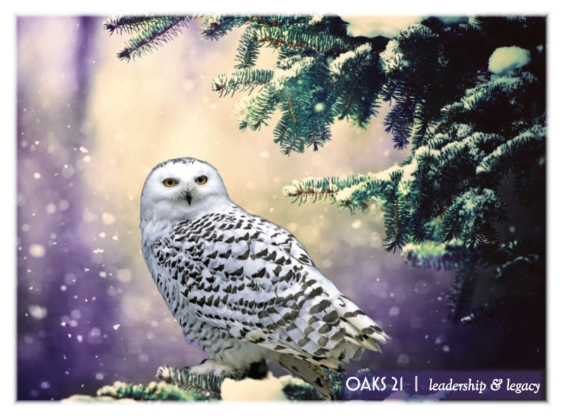 2016-10-COR-FIJI-HolidayCard-front